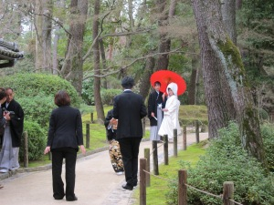 Wedding party at Korakuen, or is this an advertising photo shoot?
