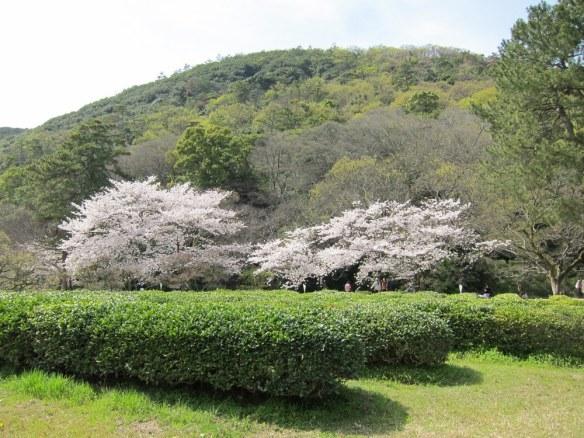 Mt. Shuin as borrowed scenery