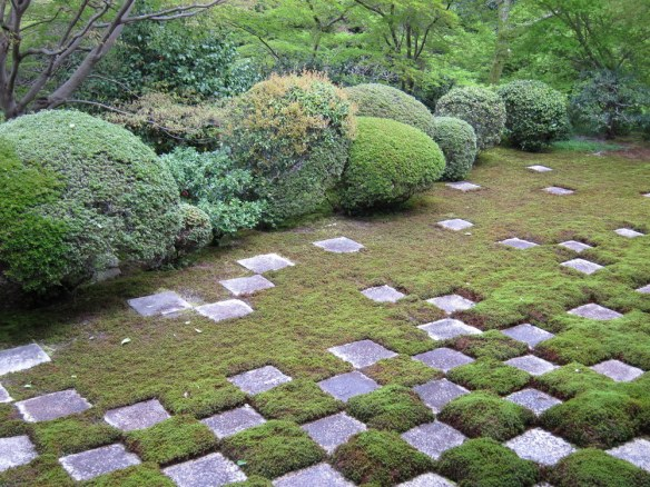 Tofukuji is famous for this lawn.