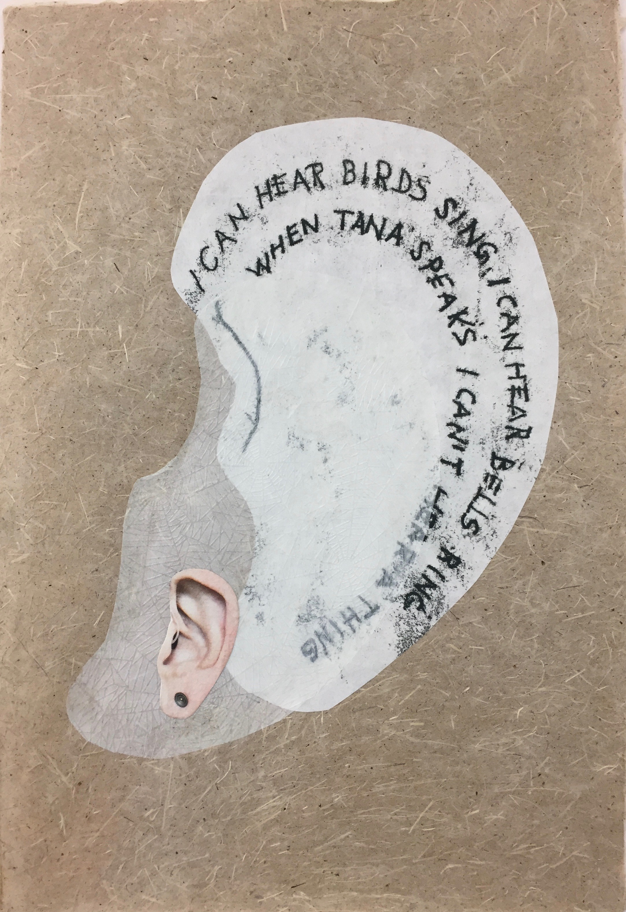 Ear collage